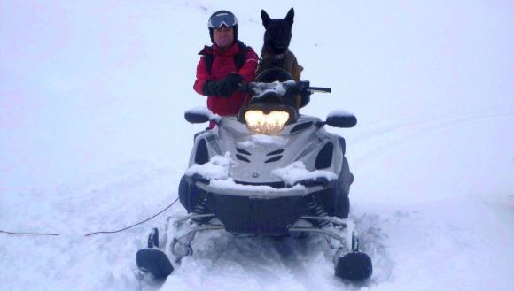 Şase câini, specializaţi în intervenţie, ajută Salvamont România - Foto