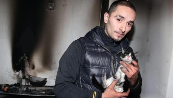 De necrezut: o pisică şi-a salvat stăpânul de la moarte