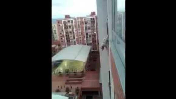 Operațiunea care te va ține cu sufletul la gură - cum a salvat un om obișnuit un câine blocat în balcon – VIDEO
