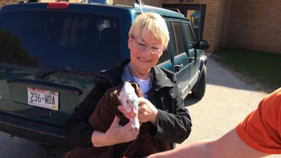 O rață a fost salvată de la eutanasiere datorită tehnologiei de ultimă generație - VIDEO