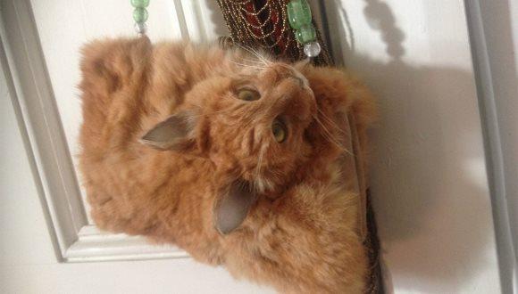 1.400 de dolari pentru o geantă confecționată dintr-o pisică împăiată, iar clienții stau la coadă