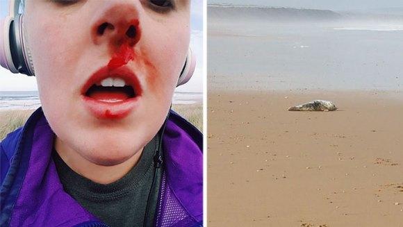 O femeie a încercat să oprească 8 adolescenţi care voiau să îngroape un pui de focă de viu. A fost agresată- FOTO