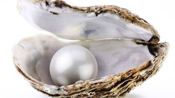 Cum produc stridiile perle?