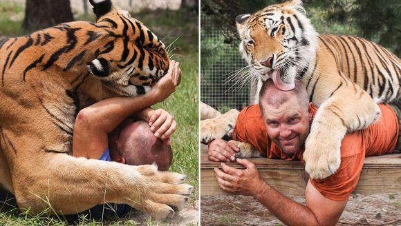 Bărbatul care se luptă cu tigrii şi leii pe care îi creşte în propria curte