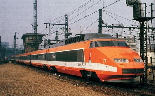 O pasare a oprit circulatia TGV-urilor in Franta
