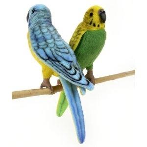 Sexul papagalilor<br>