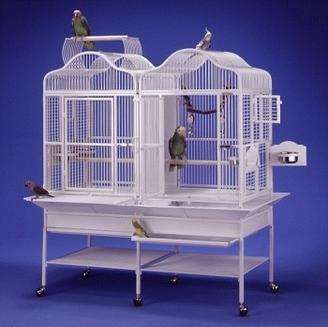 Colivii si accesorii pentru pasari