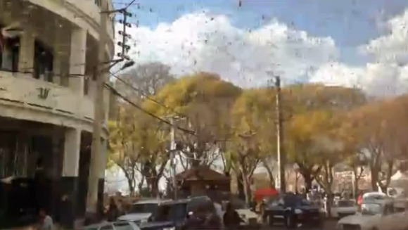Miliarde de lăcuste au invadat cerul Madagascarului - VIDEO