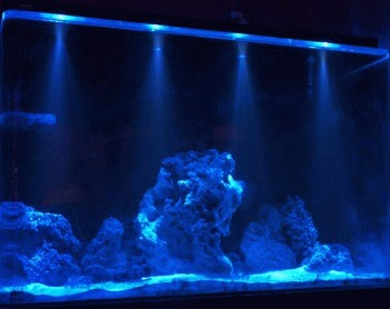 Iluminarea acvariului