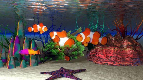 Top 7 cei mai frumoşi peşti din lume
