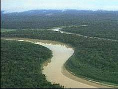 Amazonul va supravietui incalzirii globale