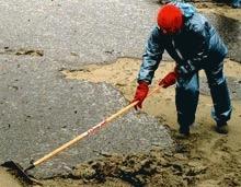 Dezastrul ecologic din 1999 ii costa pe vinovati 200 de milioane de euro