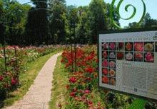 Gradina Botanica Bucuresti, raiul plantelor de pretutindeni