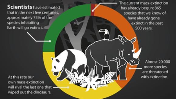 A şasea extincţie în masă se întâmplă acum! Inclusiv oamenii ar putea dispărea