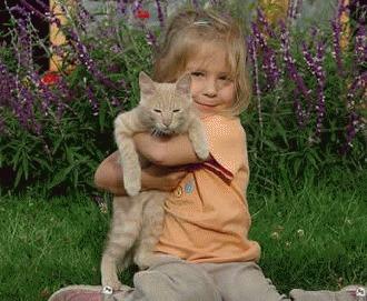 Top 10 rase de pisici pentru familii cu copii