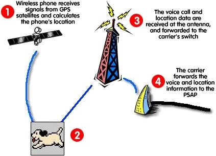 Sistem GPS pentru caini si pisici
