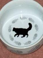 Suplimentele nutritive la pisici