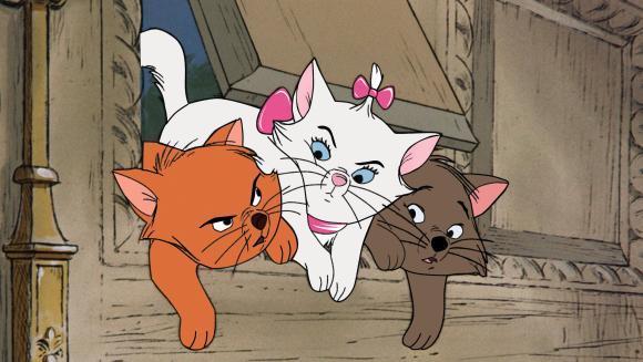 Nume de pisici inspirate din filme