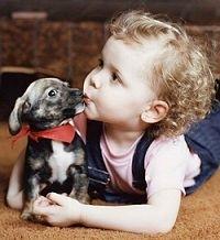 Copilul si cainele