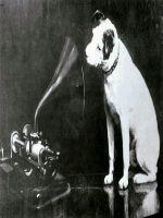 Un caine sta la baza aparitiei unei marci celebre