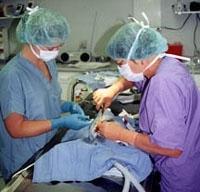 CAINE: Boli ale aparatului uro-genital - Urolitiaza