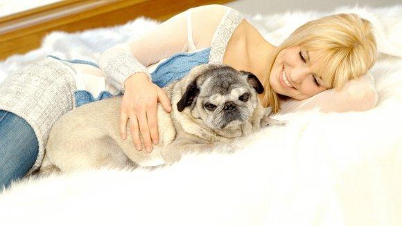 4 lucruri înfricoșătoare care se pot ascunde în patul câinelui tău – Ce este de făcut?