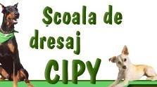 Bucuresti: CIPY - scoala de dresaj