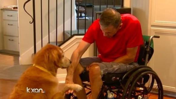 Câinele erou: şi-a salvat stăpânul paralizat