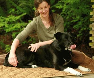 Masajul cainelui - Cum ajutam cainele sa se relaxeze ?