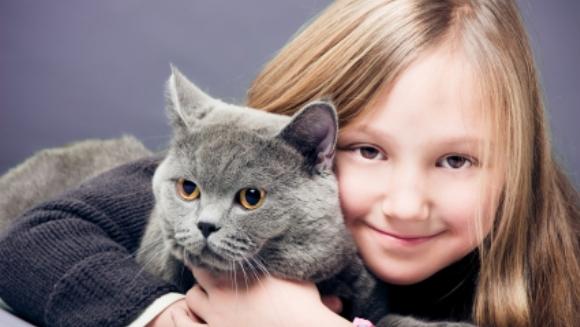 Cum se fac pisicile vinovate de notele slabe ale copilului: parazitul care controlează mintea umană