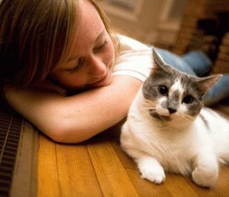 Fii un bun parinte adoptiv pentru pisici!