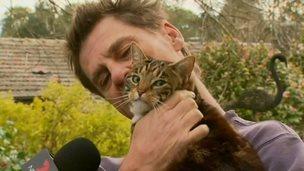 Pisica-erou: şi-a salvat stăpânul dintr-un incendiu