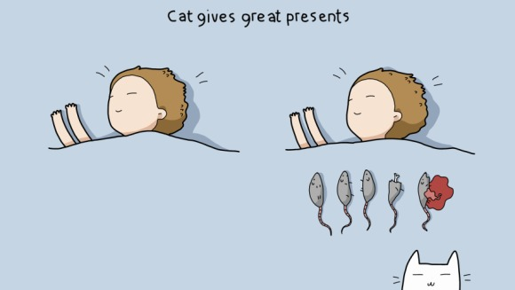 10 beneficii  de care doar stăpânii pisicilor au parte