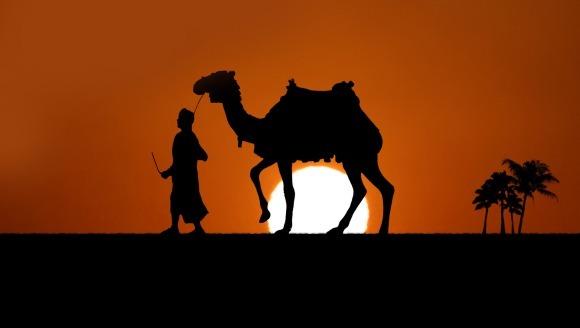 Mituri despre animale - între adevăr şi legendă