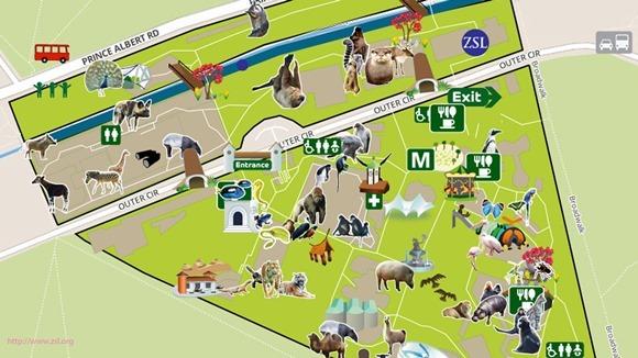Curiozităţi nemaiauzite despre zoo Londra
