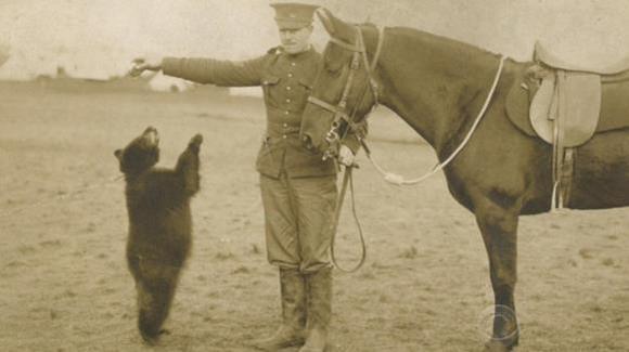 Adevărata poveste a lui Winnie the Pooh. A fost un ursuleţ real, salvat de un soldat
