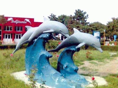 Delfinariul din Constanta cumpara trei delfini din China