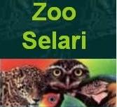 Bucuresti: ZOO SELARI - animale si accesorii pentru acestea