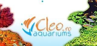 Constanta: CLEO - acvaristica