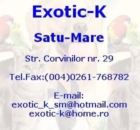 Satu Mare: EXOTIC K - accesorii si hrana pentru animale