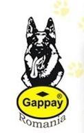 Bucuresti: GAPPAY - accesorii