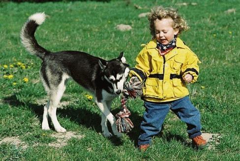 Animalul de companie - un membru cu drepturi depline al familiei
