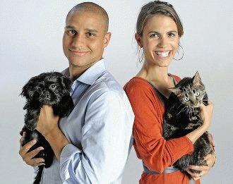 Animalele de companie - pericol pentru seropozitivi?!