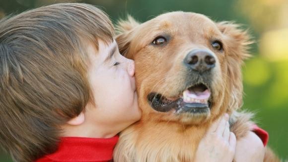 Este bine să ne sărutam animalul de companie?