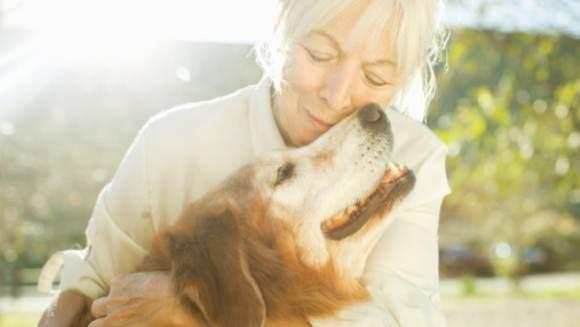 Animalul de casă – compania perfectă pentru vârstnici