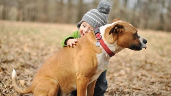 Cum să îţi înveţi copilul să iubească animalele