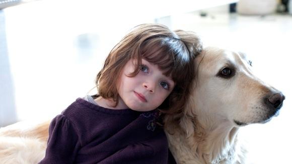 Sfaturi utile: Cum  să îți convingi părinții să îți cumpere un câine