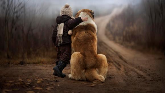 Ghid pentru copii: Cum să fii un părinte bun pentru câinele tău