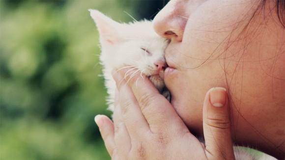 Boli pe care le poți lua de la câini și de la pisici