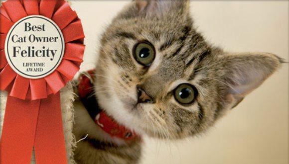 12 motive pentru care fiecare părinte de pisică merită să fie medaliat cu aur – FOTO
